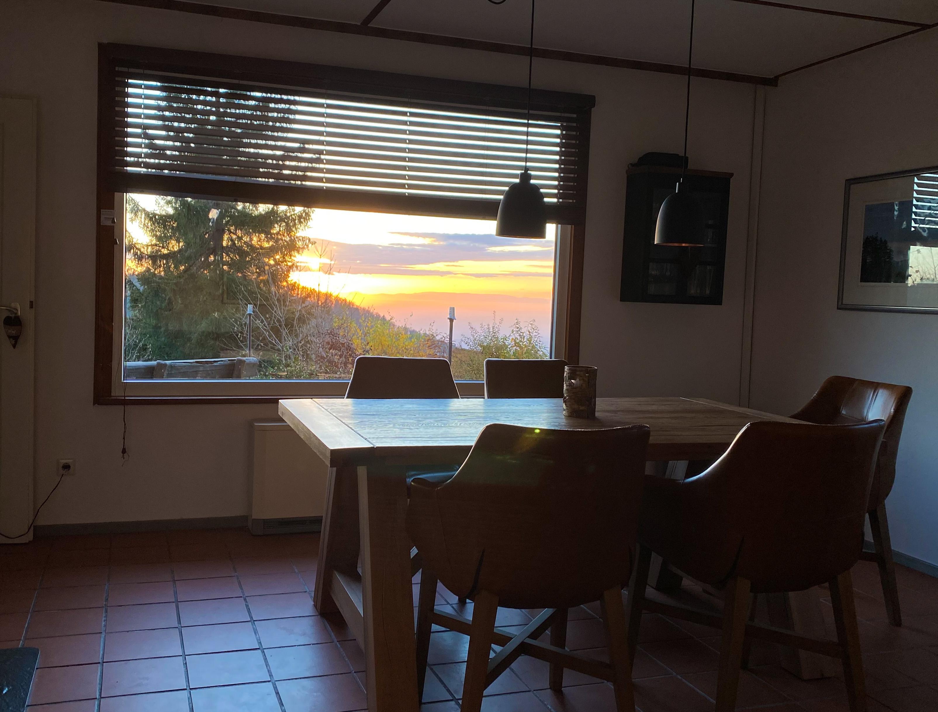 Neues Panoramafenster (seit Nov 2020)