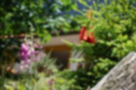 Sommer Chalet Bergweide (5 von 13).jpg