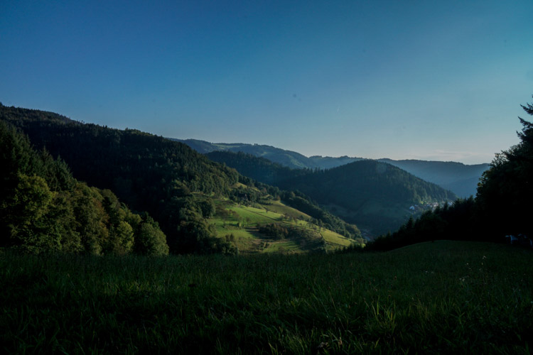 Typical Black Forest landscape