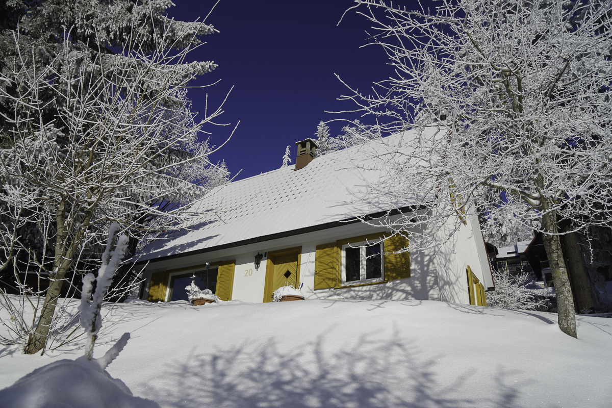 Winter Chalet Bergweide