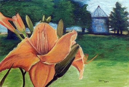 Daylily Pastel Drawing