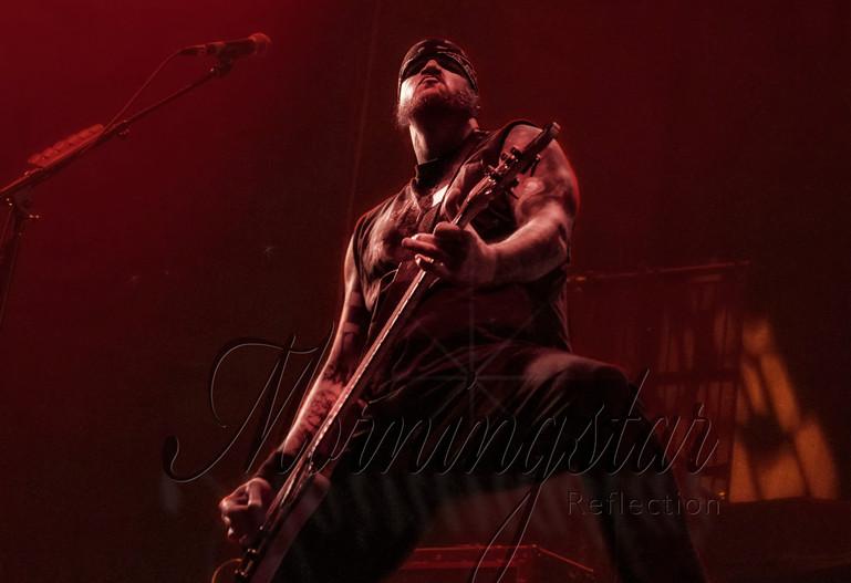 Phil Anselmo bassist
