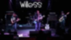 willess6.jpg