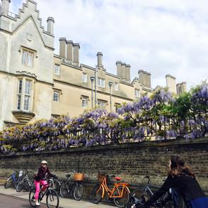 Cambridge Sidney Sussex College