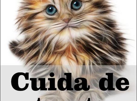 Los gatos y el coronavirus (Alerta del doctor Gaona)