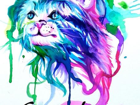 Relatos gratuitos para descargar: Gatito bonito