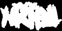 nicitel-logo.png