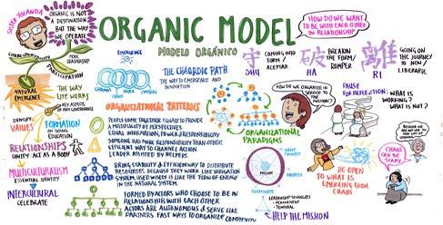 SA 6 organic model