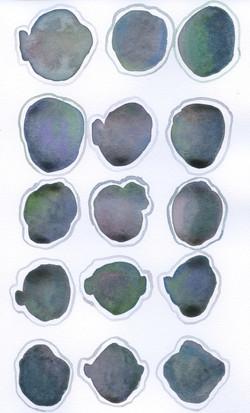 19 Green_Brown_Purple_Teal Grey Outline