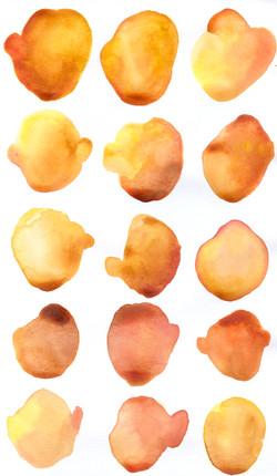 9 Orange_Yellow