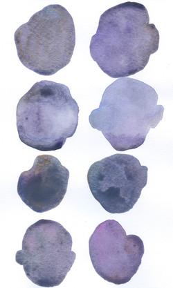 28 Purple_Periwinkle_Brown