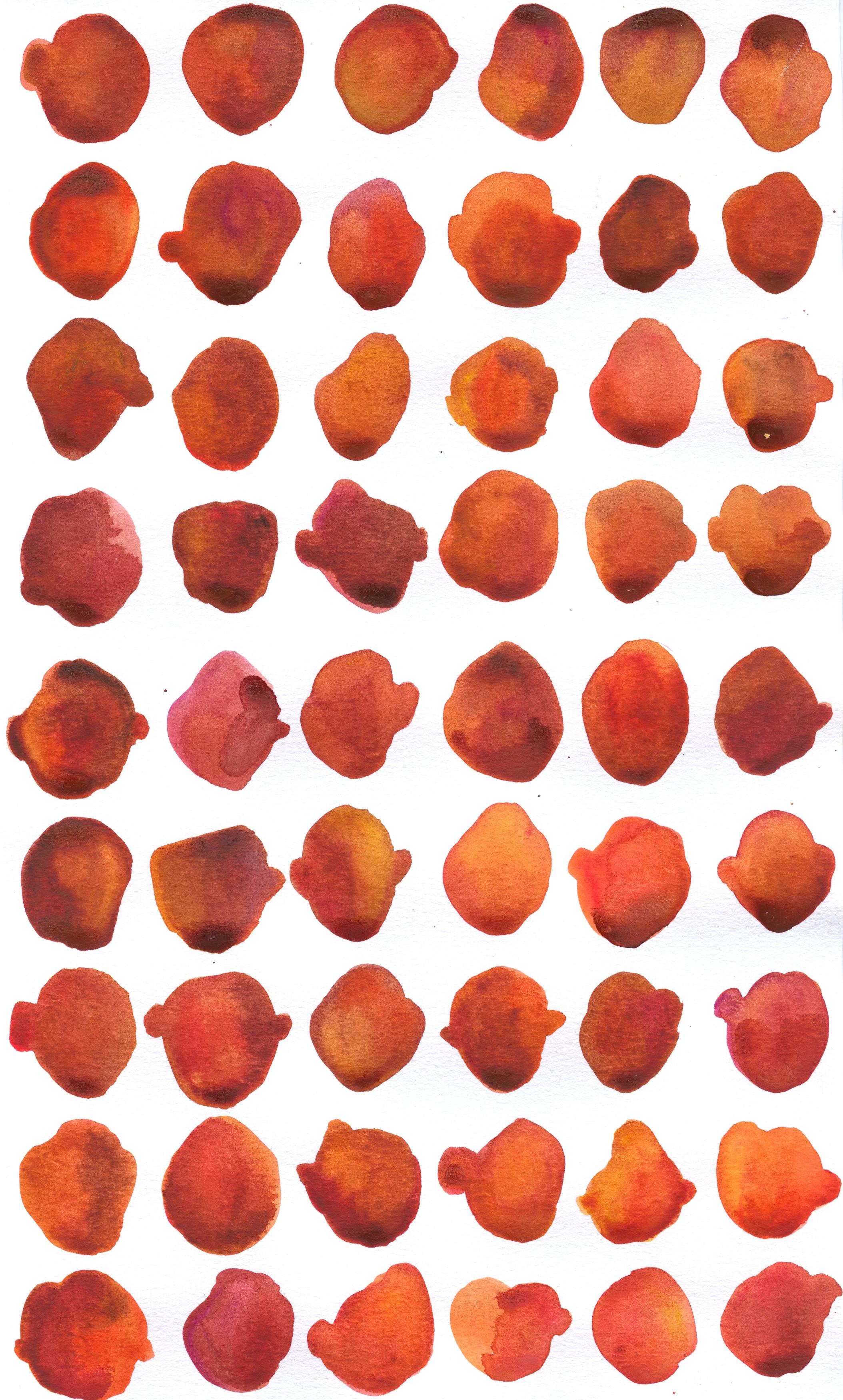 8 Orange_Red