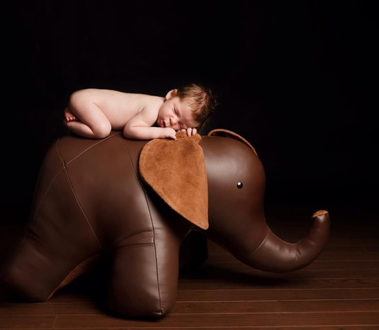 Elephant Leather Ottoman