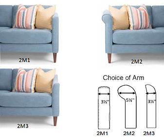 2M1_2_3 Arms.jpg