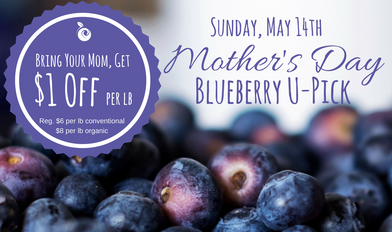 Mother's Day at Jubilee Orchards