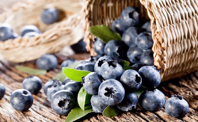 Blueberry Health Benefits