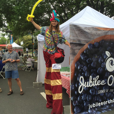 4,000 Taste Jubilee Blues at The Chain of Parks Arts Festival!