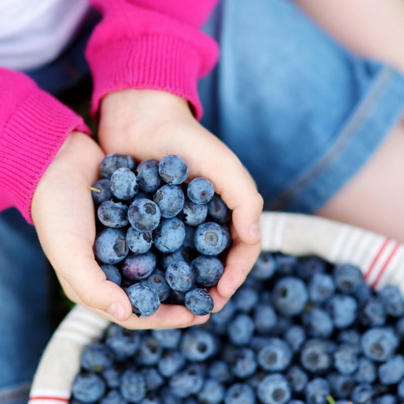 So may berries!!