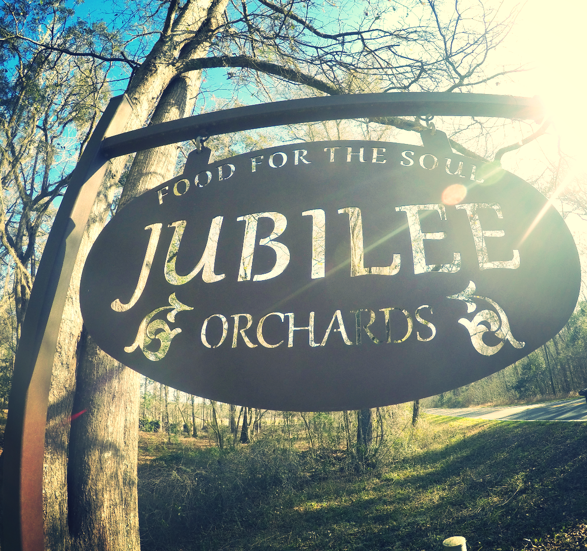 Welcome to Jubilee Orchards