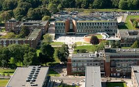 英國升學心得- University of Sussex Film Studies 電影研究 | 咁冷門嘅科目其實讀咩?出路?Sussex點樣?