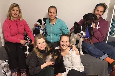 Koirien kraniaaliosteopatia2.JPG