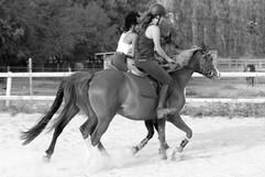 Cours avec double poneys