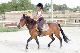 Cours avec double poney