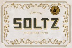 Soltz_v2_Cover1-01