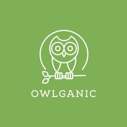 Owlganic Logo