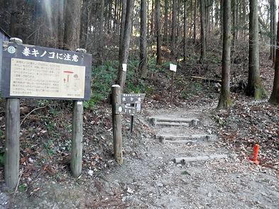 20190130_宝登山08.jpg
