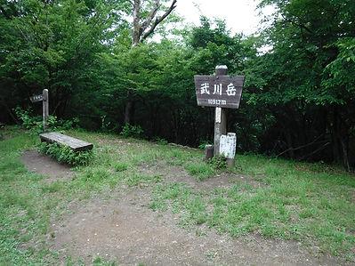 20180613_二子山から武川山09.jpg