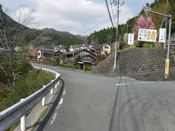20210401_西吾野から伊豆ヶ岳02.jpg