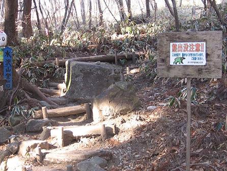 20140111_水沢山5.jpg