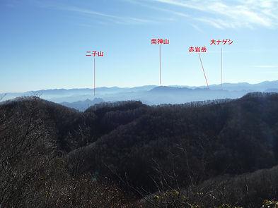 大ナゲシ09.jpg