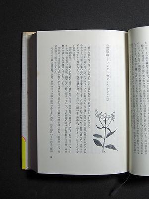 花の百名山02.jpg