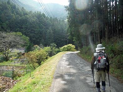 20160420_仙人ヶ岳02.jpg