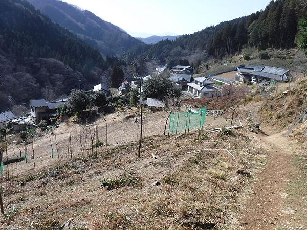 20210311_高篠峠と大野峠11.jpg