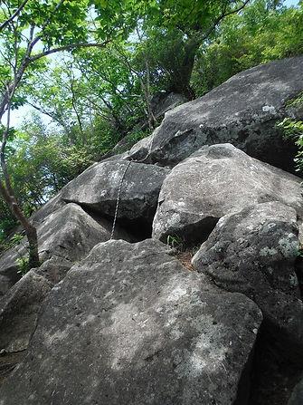 20160711_鈴ヶ岳09_edited.jpg