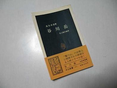 中公新書谷川岳1.jpg