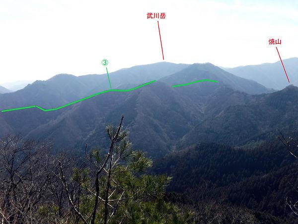 20190302_二子山08.jpg