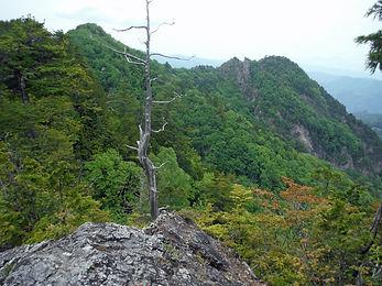 20160604_大岩焼山14.jpg