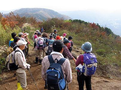 20141108_明神ヶ岳4.jpg