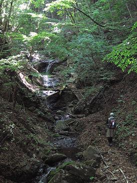 20130523_諏訪山2.jpg