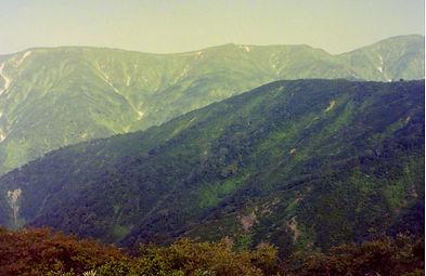 平ヶ岳12.jpg