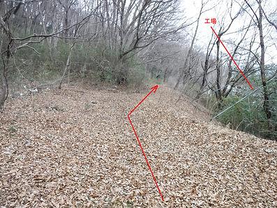 20180228_八王子丘陵6_12.jpg
