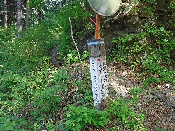 20210510_大平山12.jpg