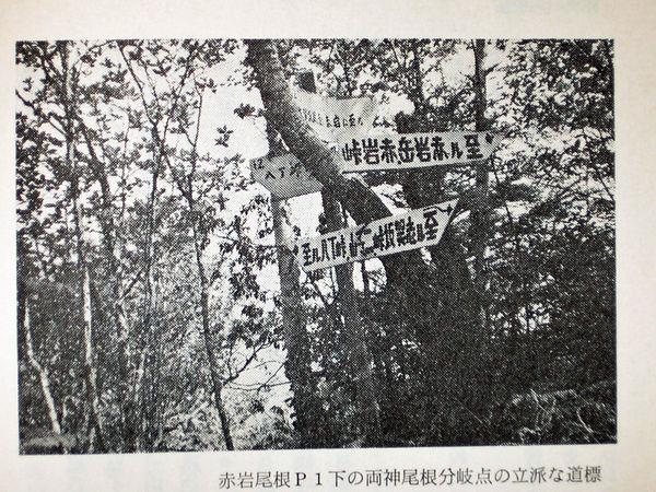 朽ちた道標の判読04.jpg
