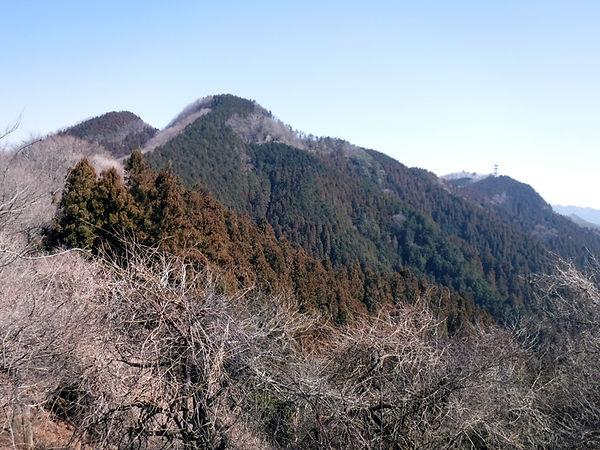 20190302_二子山07.jpg