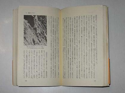 中公新書谷川岳3.jpg