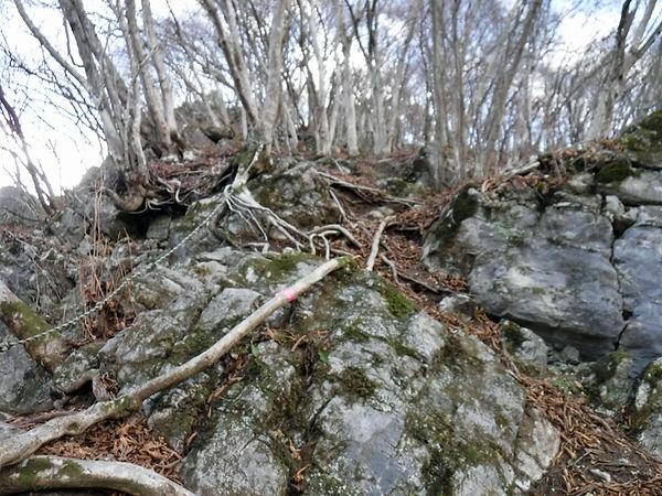 20201214_若御子山と大反山04.jpg